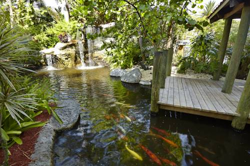 embassy-suites-hotel-ft-lauderdale-17-street-indoor-koi-pond